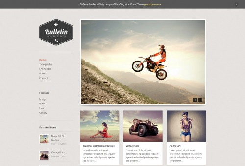 Bulletin Tumblog WordPress Theme