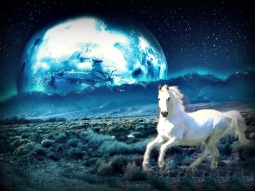 Moonlite Horse Photo Manipulation