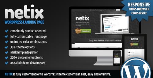 Netix - WordPress Landing Page