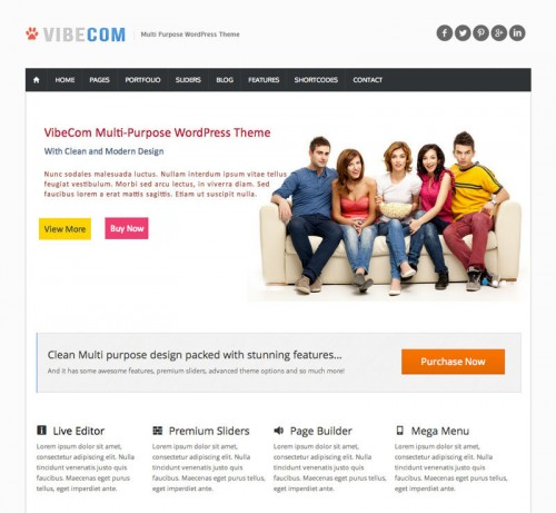 VibeCom Responsive WordPress Theme