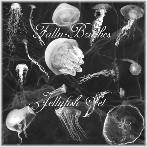Amazing Jellyfish Brushes Set
