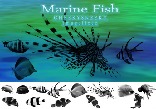 Marine Fish Brush Set