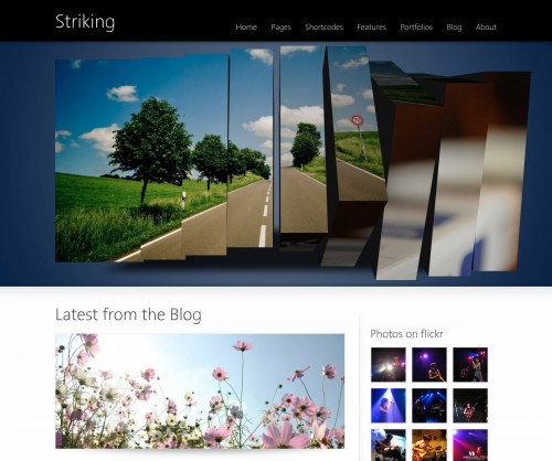 Striking Corporate & Portfolio WP Theme