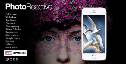 PhotoReactive - Fullscreen Studio for WordPress