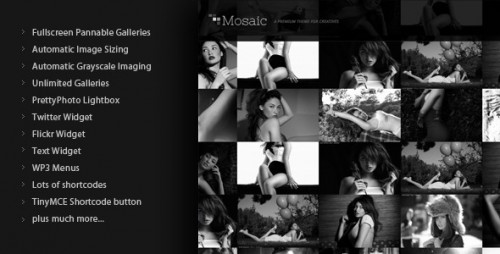 Mosaic WordPress Premium Themes