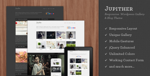 Jupither - Responsive WordPress Gallery & Blog Theme
