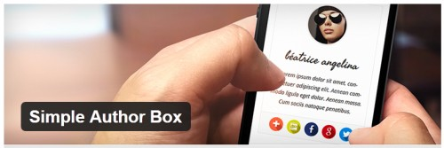 Simple Author Box