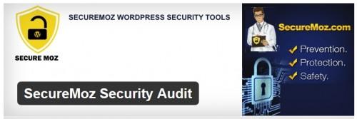 SecureMoz Security Audit