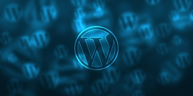 What You Have To Do After You Install WordPress