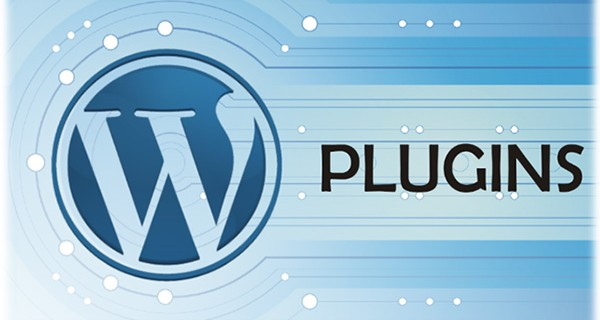 Essential Plugins for Your Website